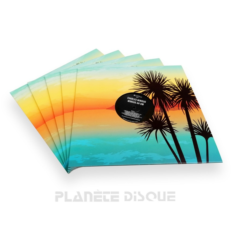 10 Pochettes carton avec trou 33T tropical